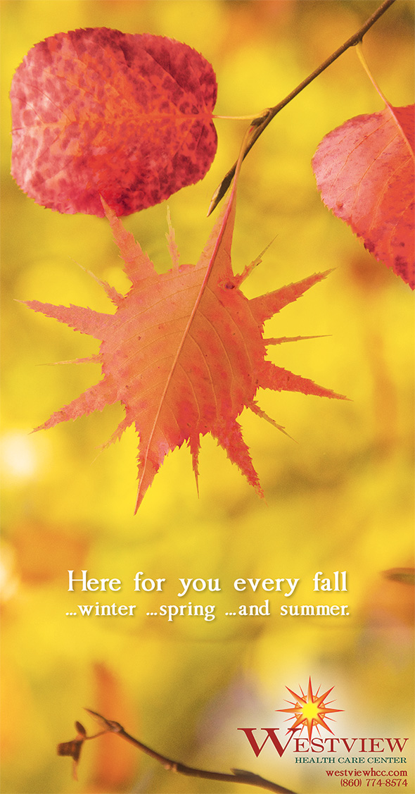 Photo of Fall full page ad