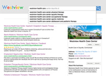 Search Results advertisement