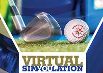 Virtual Simulation photo