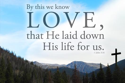 image of scripture quote